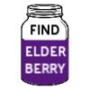 Find Elderberry